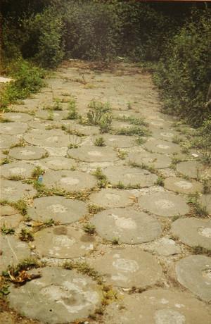 Interno con la caratteristica pavimentazione costituita da mole, in Ada Peyrot, 1988, p. 347.
