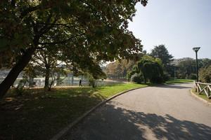 10. Lapidi, cippi e monumenti nei quartieri