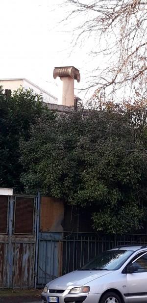 Colonna cinquantenario dello Statuto Albertino. Fotografia di Fabrizio Giusti, 29 dicembre 2020