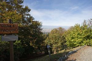 Viale Pasubio (parco della Rimembranza). Fotografia di Roberto Goffi, 2010. © MuseoTorino.