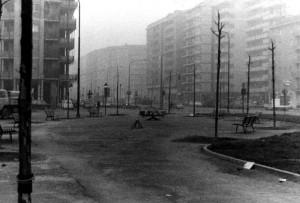 Giardino di piazza Pitagora, sullo sfondo corso Siracusa, 1972 © EUT 2