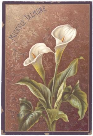 Cartolina Talmone, s.d. © Archivio Storico della Città di Torino