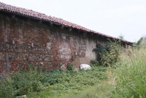 Dettaglio del portale tamponato sulla manica settentrionale della cascina. Fotografia di Edoardo Vigo, 2012.
