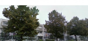 Primo Liceo Artistico Statale