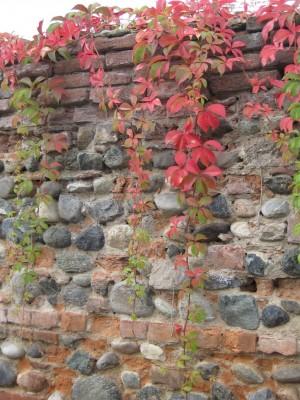 Dettaglio della muratura della cascina Meisino. Fotografia di Carlotta Venegoni, 2012.