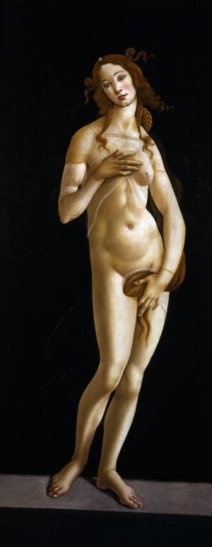 Sandro Botticelli, Venere, circa 1485-1490.  Torino, Musei Reali - Galleria Sabauda