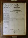 Negro - Ditta Gianduja, autorizzazione a collocare l'insegna nel locale in p.zza Emanuele Filiberto, datata 1867, Fotografia di Marco Corongi, 2003 ©Politecnico di Torino