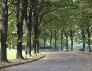 Parco della Pellerina (Parco Mario Carrara; parco Vittime del rogo del 6 dicembre 2007 nello stabilimento della Thyssenkrupp)