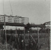 IL ROCCAFRANCA. Fotografia dei primi anni Ottanta del Novecento
