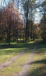 Passeggiando a Mirafiori sud, sponda sinistra del Sangone
