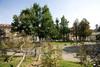 Scorcio dei giardini di piazza Cavour. Fotografia di Roberto Goffi, 2010. © MuseoTorino.