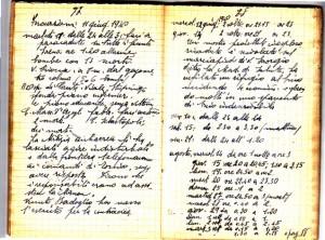 Diario dell'Istituto Lorenzo Prinotti, 1940. ASCT, Fondo Prinotti cart. 31 fasc. 11, 9, pp. 77-78. © Archivio Storico della Città di Torino