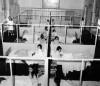 Ospedale Amedeo di Savoia. Reparto infantile in un'immagine del 1974. Archivio Storico Relazioni Esterne ASL TO1.