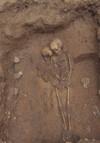 Una sepoltura con due inumati, © Soprintendenza per i Beni Archeologici del Piemonte e del Museo Antichità Egizie.