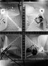 Nervi e l'ingegneria strutturale a Torino