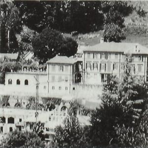 Villa de Dominicis, già Vigna Tron