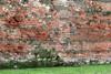 Particolare del paramento della cortina muraria esterna, © Soprintendenza per i Beni Archeologici del Piemonte e del Museo Antichità Egizie.