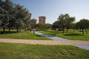 I sentieri del parco Colonnetti. Fotografia di Roberto Goffi, 2010. © MuseoTorino.