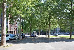 Giardino di piazza Pitagora, verde e traffico. Fotografia di Elena Piaia, 2017
