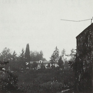 Villa Poggio, già Vigna Martini