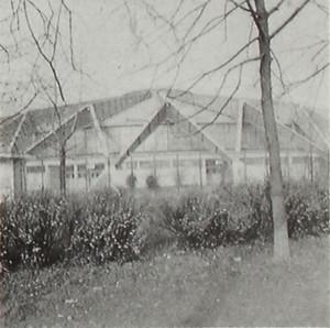 PALAZZETTO DELLO SPORT. Fotografia dei primi anni Ottanta