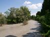 La Dora Riparia presso il parco della Pellerina durante la piena del maggio del 2008. Archivio Circoscrizione 4.