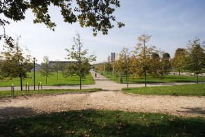 Il parco Cavalieri di Vittorio Veneto (già piazza d'Armi). Fotografia di Roberto Goffi, 2010. © MuseoTorino.