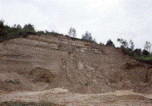 I sedimenti di ambiente fluvio-lacustre dell'area-tipo di Villafranca d'Asti