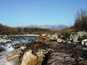 Foresta fossile di Nole Canavese