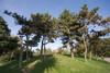Scorcio di parco Ruffini. Fotografia di Roberto Goffi, 2010. © MuseoTorino.