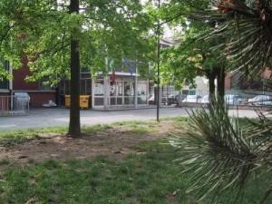 Scuola elementare Ernesto Chiovini