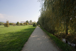 Il parco Colonnetti. Fotografia di Roberto Goffi, 2010. © MuseoTorino.