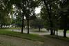 I giardini di piazza Cavour. Fotografia di Dario Lanzardo, 2010. © MuseoTorino.