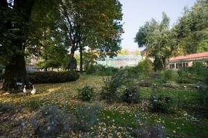 Orto botanico all'interno del parco del Valentino. Fotografia di Roberto Goffi, 2010. © MuseoTorino