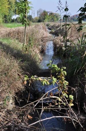 Canale d'irrigazione della cascina Cavaliera. Fotografia di Ilenia Zappavigna, 2012.