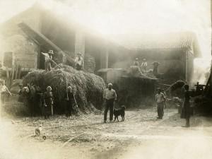 Cascina Spinetta, trebbiatura sull'aia, 1935 (archivio privato)