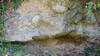 Depositi fluvioglaciali poggianati su un paleosuolo presso Pianezza