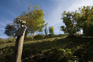 Scorcio del colle della Maddalena (parco della Rimembranza). Fotografia di Roberto Goffi, 2010. © MuseoTorino.