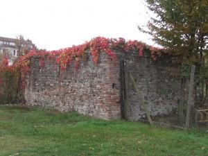 Angolo Nord-Est del muro perimetrale della cascina Meisino. Fotografia di Carlotta Venegoni, 2012.