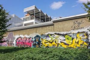 Rojo Roma, murale senza titolo, giardino via Passo Buole. Fotografia di Roberto Cortese, 2017 © Archivio Storico della Città di Torino