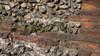 I resti delle mura romane nei pressi della Porta Palatina (particolare, 2). Fotografia di Plinio Martelli, 2010. © MuseoTorino.