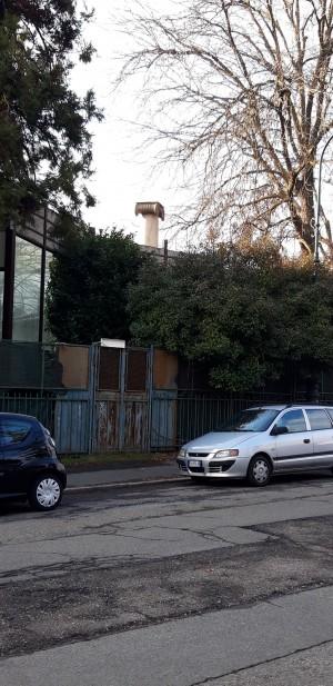 Colonna cinquantenario dello Statuto Albertino in via Boiardo, parco del Valentino. Fotografia di Fabrizio Giusti, 29 dicembre 2020