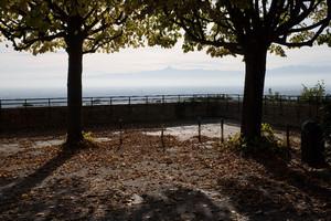 Uno dei punti panoramici del parco Europa. Fotografia di Roberto Goffi, 2010. © MuseoTorino.