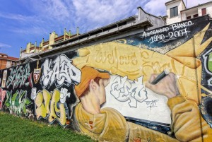 Artisti vari, We Love Enak, 2008, giardino Grandi