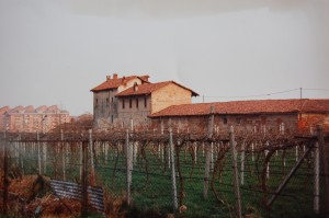 Cascina Cavaliera. Fotografia di Walter Chervatin, 1992