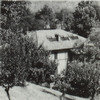 Villa Mangiardi, già Vigna il Viale