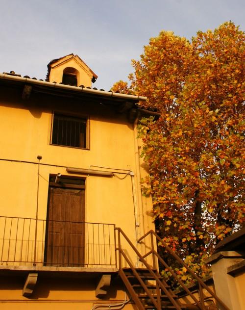 mt scheda cascina olivero