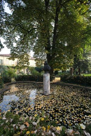 L'orto botanico all'interno del parco del Valentino (busto in memoria di Carlo Allioni). Fotografia di Roberto Goffi, 2010. © MuseoTorino.