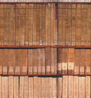 Archivi torinesi
